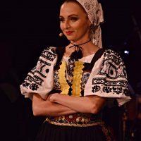Spevácka skupina: Piesne pri pohárikoch. Foto: Martin Krigovský