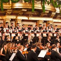 Lúčnica v Musikvereine 19.11.2012
